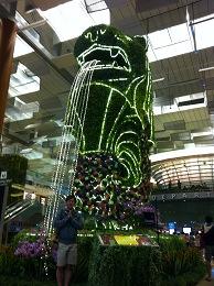 チャンギ空港 シンガポールおもろい